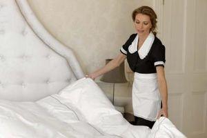 Ciò che ucciderà Bed Bugs?