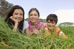 Come usare una coperta semi-germinazione sopra erba esistente