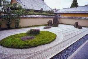 Giapponesi Piante Rock Garden