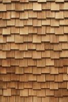 Problemi sul tetto del cedro
