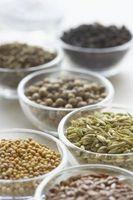 Come raccogliere semi di finocchio