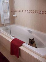 Home rimedi per la pulizia di macchie di ruggine da una vasca di bagno