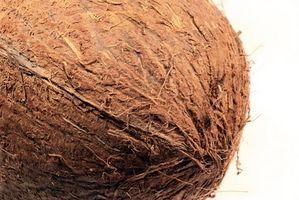 Coconut pacciame e inquinamento del suolo