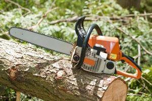 Come tagliare gli alberi di pino da utilizzare come Lumber