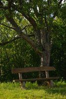 Idee panca di legno