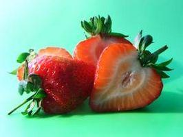 Come si coltiva fragole?