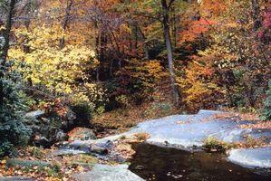 Come costruire Farm Ponds in Pennsylvania