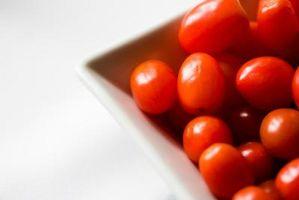 Foglie Morire per le piante di pomodoro coltivate in un Aerogarden