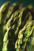 Come coltivare la tua asparagi Bed