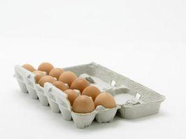 Come far germinare i semi in cartoni delle uova