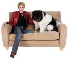 Come pulire un La-Z-Boy in microfibra Couch