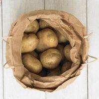 Coltivazione di patate in un cilindro