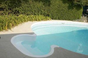 Morto alghe in piscina