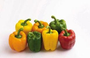 Come coltivare peperoni con magnesio