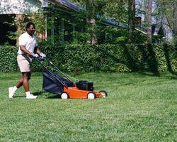 Come Raddrizzare una Bent Lawn Mower albero