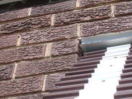 Come copertura esterna di mattoni con texture della vernice