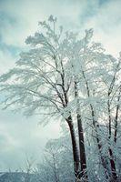 Permettere Rubinetti a gocciolare Durante Difficile Congela a mantenere in tubi da scoppio