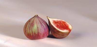 Come fare germinare un seme Fig