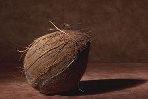 Coconut Coir & Worm compostaggio