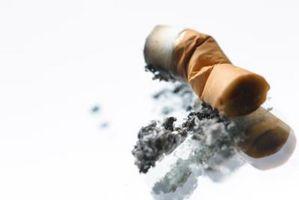 Gli effetti di mozziconi di sigaretta in Rosemary Piante