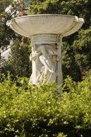 Idee per piantare Intorno Fountains