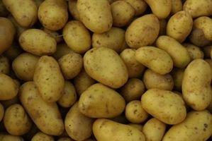 Come Spud patate