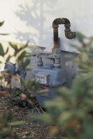 Come nascondere un contatore del gas naturale con le piante