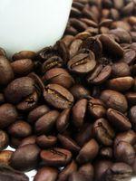 Come mantenere una Pianta del caffè Kona