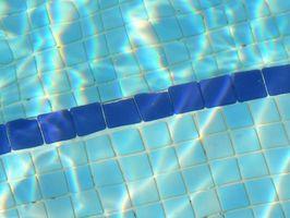 Home rimedi per uccidere le alghe nelle piscine
