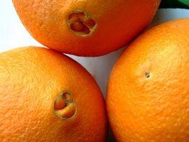 Come conservare arance navel