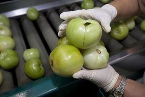 Quali sono le cause macchie nere Rotten sul pomodoro Bottoms?