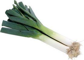 Può il vegetale Porro Be Companion Piantato con altre verdure?