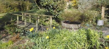 Come per ottenere la certificazione da Backyard Habitat
