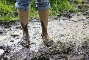Come mantenere sporcizia delle scarpe durante la falciatura un tosaerba taglio erba