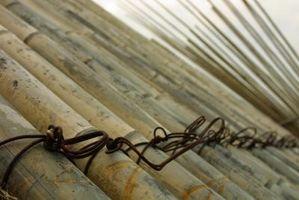 Qual è la differenza tra Clumping e non-aggregazione di bambù?