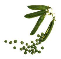 Le teorie su piante ibride