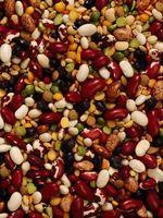 5 tipi di fagioli a germogliare