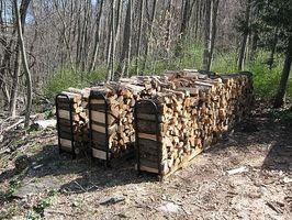 Come scegliere il miglior legna da ardere per l'inverno