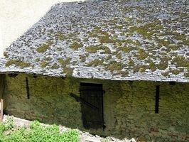 Come rimuovere Moss su un tetto di scossa del cedro