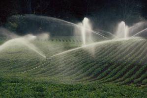 È acqua che è zolfo Per irrigazione?