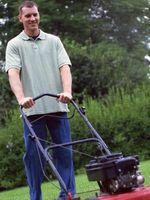 Come fare un preventivo per taglio erba
