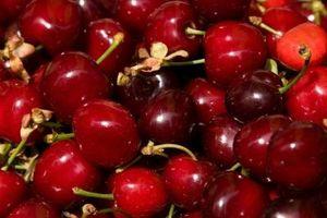 Come Spruzzare un albero Richmond Cherry per Worms