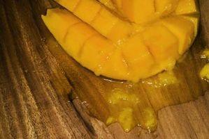 I fatti su Mango frutta, foglie e alberi