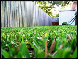 Che cosa avete bisogno per iniziare un business Lawn Care?