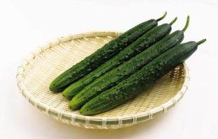 Come coltivare piccoli cetrioli per sottaceti giapponesi
