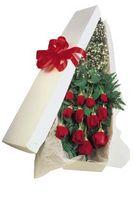 Come prendersi cura di rose a stelo lungo