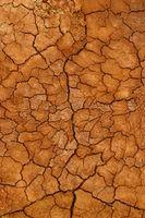 I migliori tipi di terreno per la ritenzione idrica