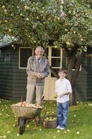 Come trasformare un capannone in un cottage