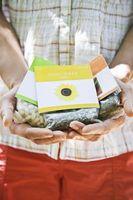 Come fare germinare un seme con un tovagliolo di carta e senza suolo