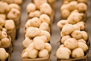 Come coltivare funghi commestibili Dentro